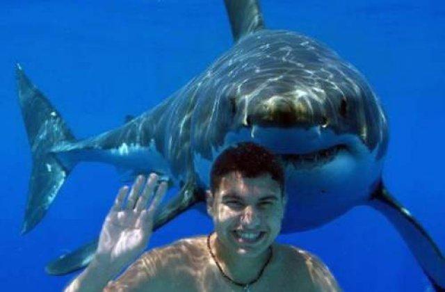 Australia: Salvata din gura unui rechin, de un barbat care a prins animalul de coada