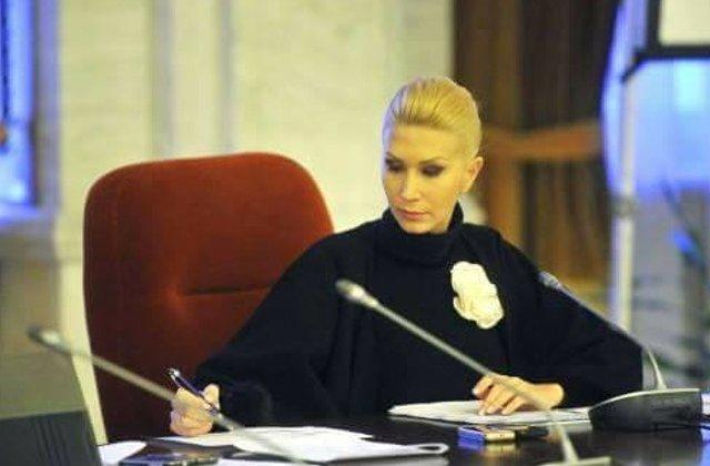 Turcan: Comisia de ancheta privind alegerile din 2009 este un subiect nascocit de PSD pentru a parazita agenda publica
