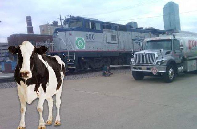 Grasimea din carnea de vita, combustibil pentru tren