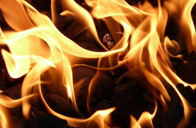 Cel putin 10 morti si 100 de raniti in incendiile de vegetatie din SUA