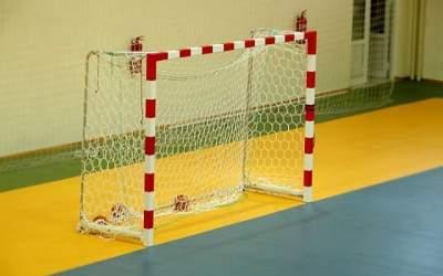 Echipa nationala de handbal...