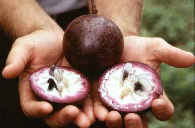 Top 10: Fructe pe care probabil nu le cunosteai