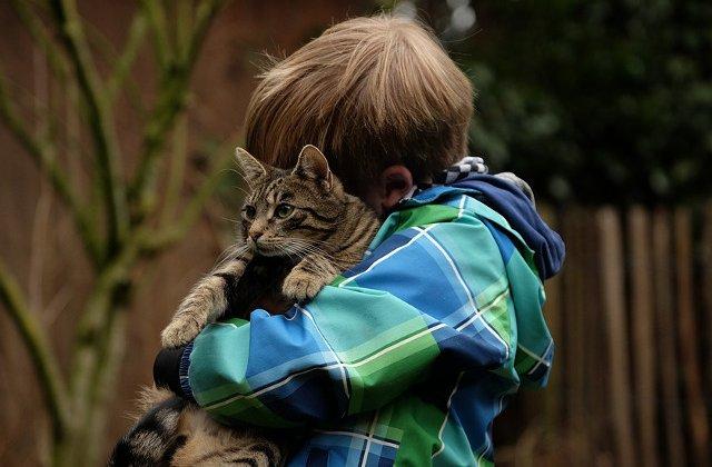 10+ fotografii care ilustreaza ca pisicile iubesc... copiii (si invers)