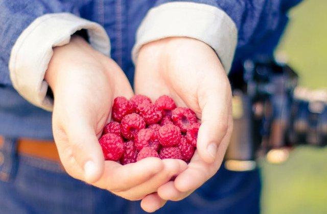 La indemana pe timpul verii! Trei surse importante de antioxidanti care intaresc sistemul imunitar