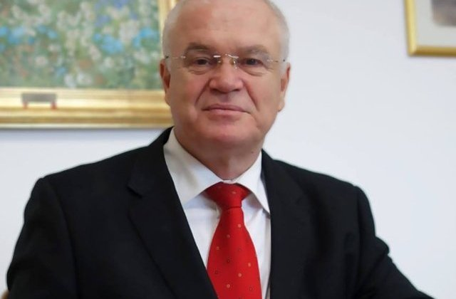 Nicolicea: Ar fi indicat ca la Cotroceni sa mearga Tariceanu sau Dragnea cand Iohannis e in concediu