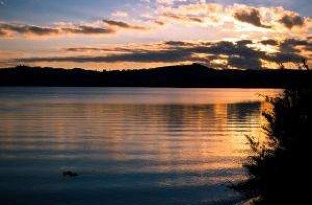 Catastrofa ecologica in Noua Zeelanda