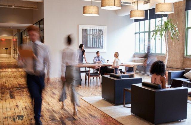 Atmosfera de la birou poate afecta felul in care lucreaza angajatii. Cum sa folosesti ambianta pentru a stimula productivitatea