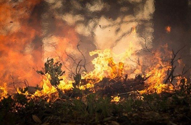 Stare de urgenta prelungita pentru incendii de padure in Canada