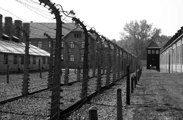 Parlamentar ucrainean: Romania, complice nedeclarat la Holocaust