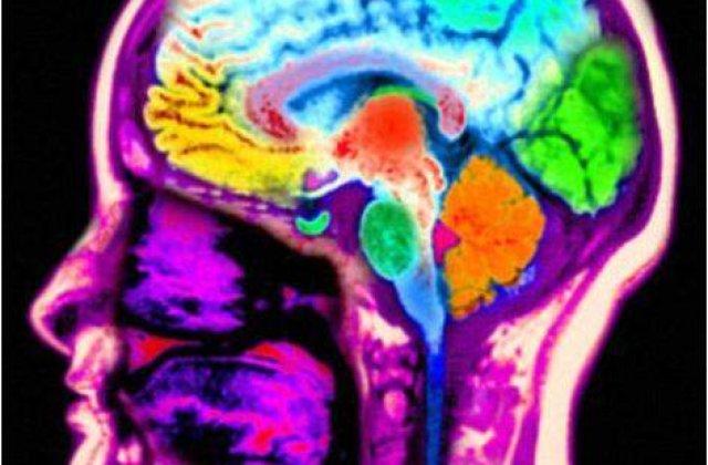 Studiu: Jocurile video violente schimba activitatea cerebrala