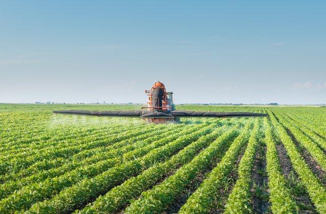 3 metode de protejare a culturilor agricole de atacul bolilor si al daunatorilor