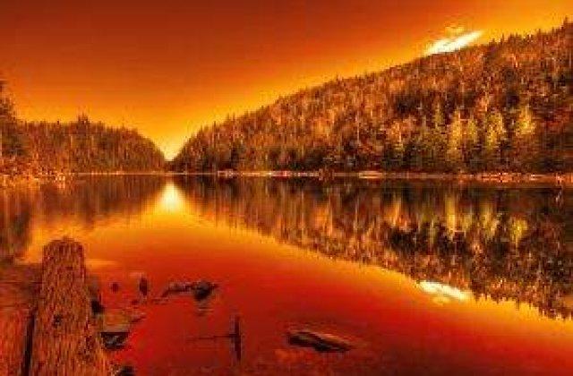 100 de hectare din rezervatia Deltei Dunarii, mistuite de incendiu