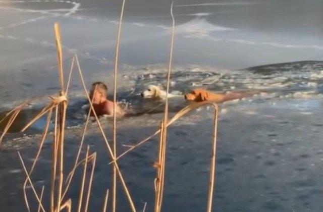 Un barbat a sarit intr-un lac inghetat pentru a salva doi caini/ VIDEO
