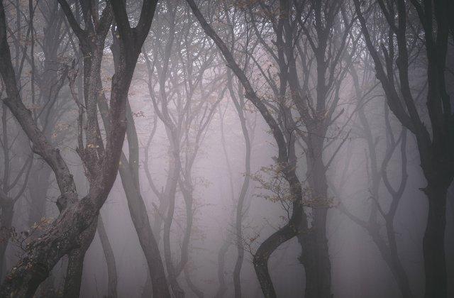 O zona din Romania, in topul celor mai infricosatoare locuri din lume
