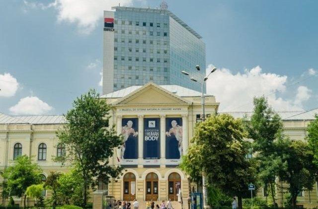 USR solicita Ministerului Culturii sa nu comaseze muzeele din Capitala