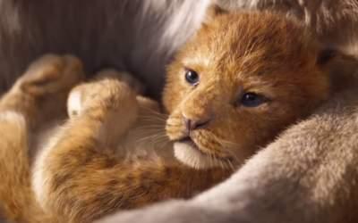 Simba din The Lion King,...