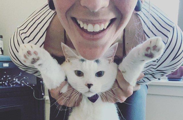 10+ obiceiuri ale stapanilor, pe care pisicile le urasc