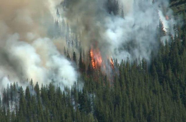 Padurea amazoniana arde de peste 16 zile. Norul de fum se vede din spatiu