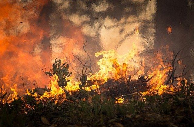 Atentionare de calatorie pentru Portugalia: Risc maxim de declansare a incendiilor de vegetatie