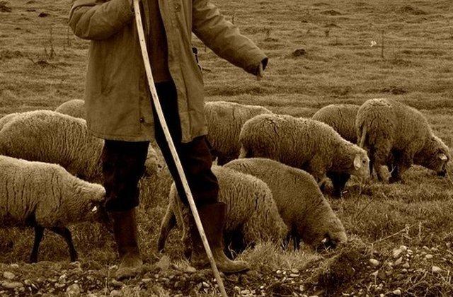 Un baiat de 13 ani, vandut de bunica lui pentru o capra si cativa bani