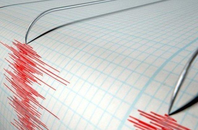 Cutemur de 3,2 grade pe scara Richter in Vrancea