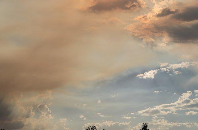 Incendiile din Australia: Fumul a ajuns pana in Brazilia/ Vedete din tenis joaca pentru strangerea de fonduri