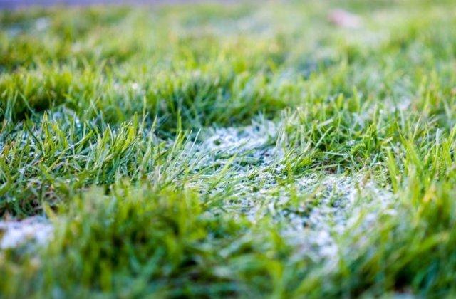 Rezerva de umiditate in cultura graului este deosebit de scazuta