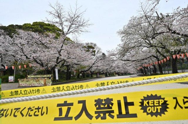 Stare de urgență fără amenzi în Japonia. Metoda inedită prin care sunt pedepsiți cei care nu respectă regulile