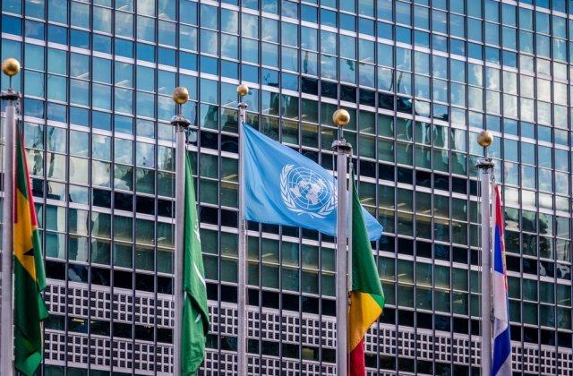ONU: Sute de mii de copii ar putea muri în acest an din cauza crizei economice