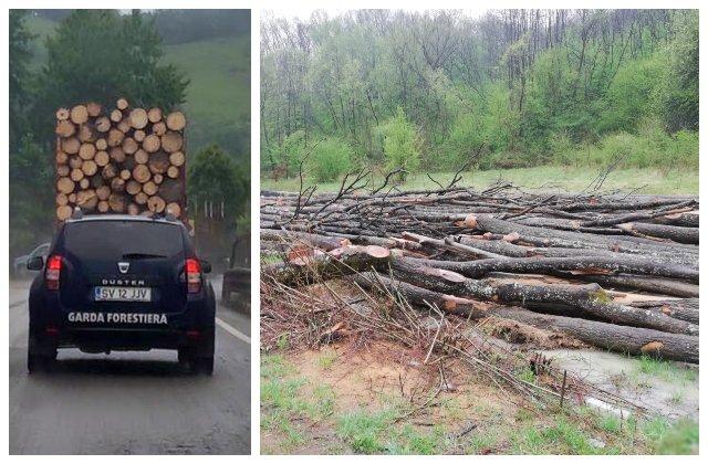 USR prezintă dovada: s-a FURAT ca în codru din păduri în starea de urgență