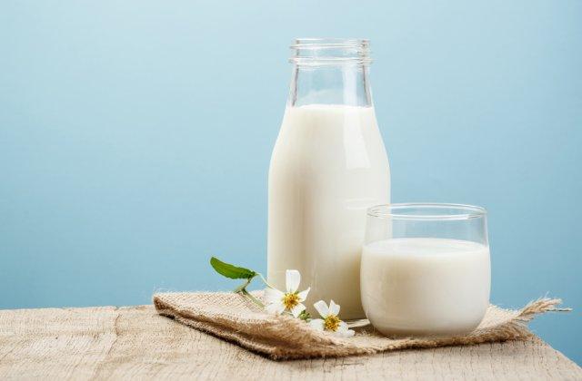 Industria lactatelor din întreaga lume, la un pas de criză. Fondurile alocate nu sunt de ajuns pentru a opri pierderile