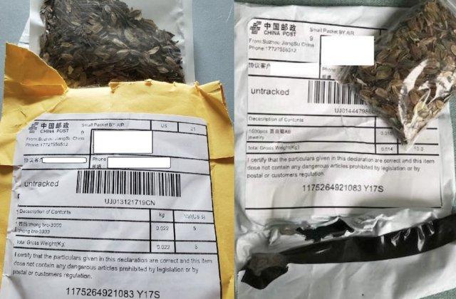 Ce se află, de fapt, între semințele misterioase trimise din China în SUA