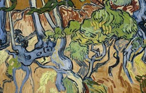 A fost găsit locul în care van Gogh ar fi pictat ultimul tablou...