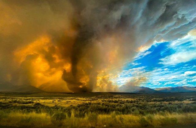 VIDEO Incendiile de vegetație din California au scăpat de sub control și au distrus 8.000 de hectare