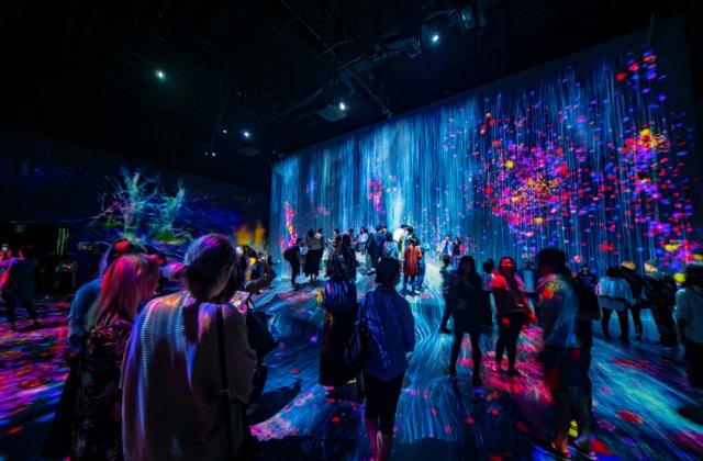 Noaptea Muzeelor 2020: Proiecte digitale pentru elevi cu ocazia celei de-a 16-a ediții