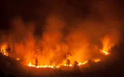 Incendiile din Indonezia au...