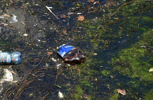 """Ministrul Mediului: """"Regiunea Mării Negre este afectată de poluarea cauzată de plastic şi microplastic"""""""