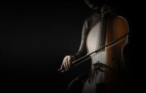 """VIDEO O violoncelistă transformă muzeele pustii în spații de """"artă..."""