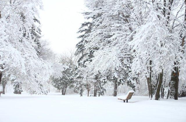 ANM: Ce prognoză meteo ne așteaptă în ultima lună de iarnă