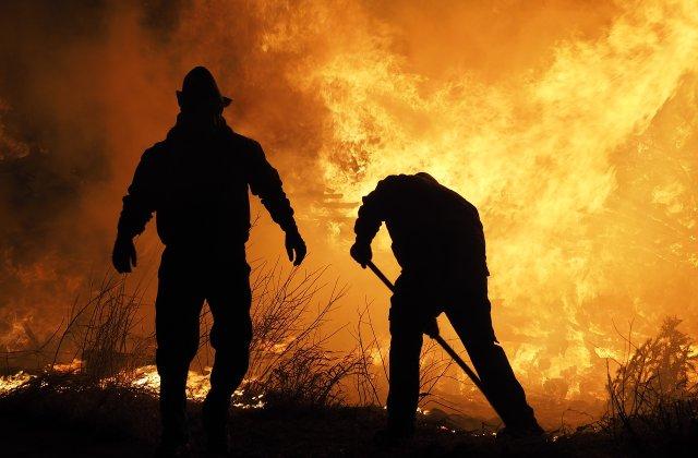 Australia: Incendiile de vegetație din vestul țării au distrus 81 de locuinţe