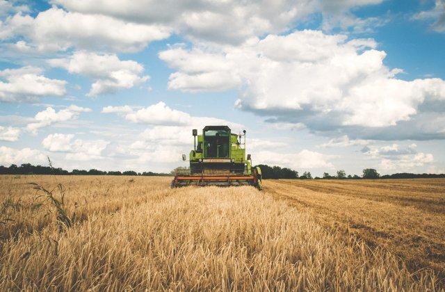 Fermierii fac apel către Iohannis privind neacordarea despăgubirilor de secetă