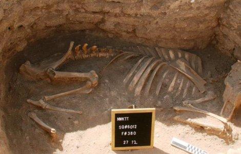 FOTO Arheologii au descoperit cel mai mare oraș antic din Egipt
