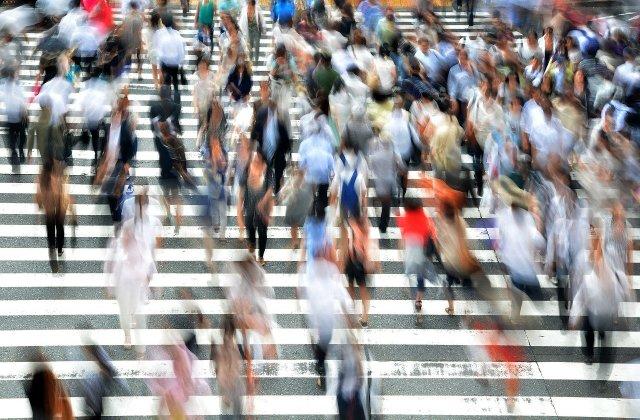 MAI: Pietonii care se uită în telefon când traversează strada ar putea primi amendă