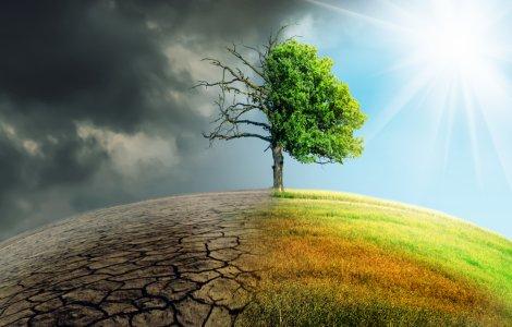 Schimbările climatice, principala îngrijorare a tinerilor din Europa