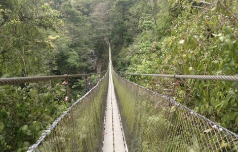 A fost inaugurat cel mai lung pod pietonal suspendat din lume!