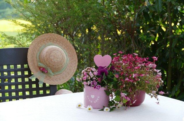 Bucură-te de mirosul placut al florilor! Plante parfumate pe care le poți crește în apartament