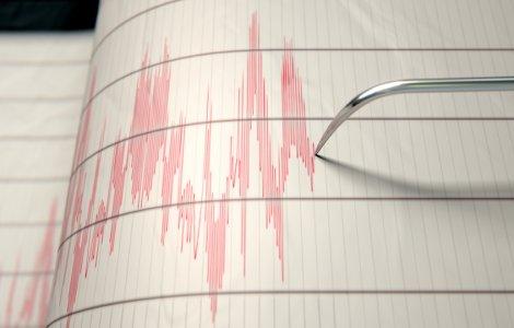 Cutremur în Vrancea: Ce magnitudine a avut seismul