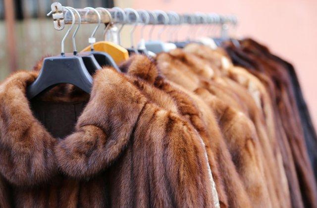 Israelul este prima ţară care interzice comerţul cu blănuri pentru industria modei