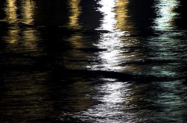 Mareea neagra din Golful Mexic are potentialul unei catastrofe