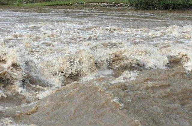 Cod portocaliu de inundatii in judetele Timis si Dolj
